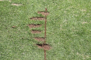 practice with divots
